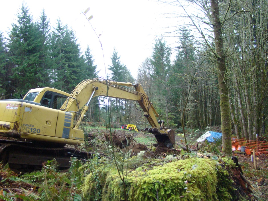 Excavator tree stump digging