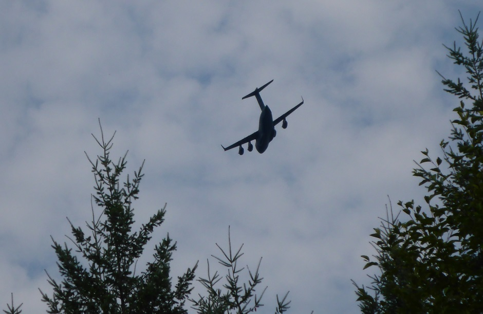 Big Plane Over Trees