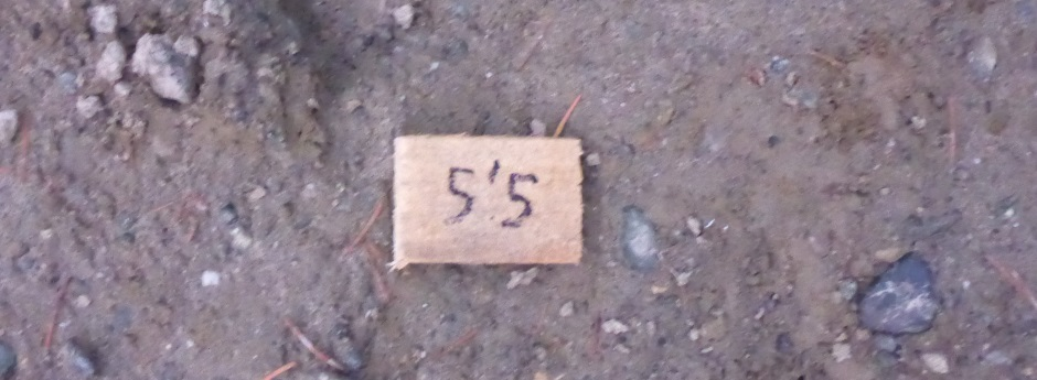 Excavation Measured Marker