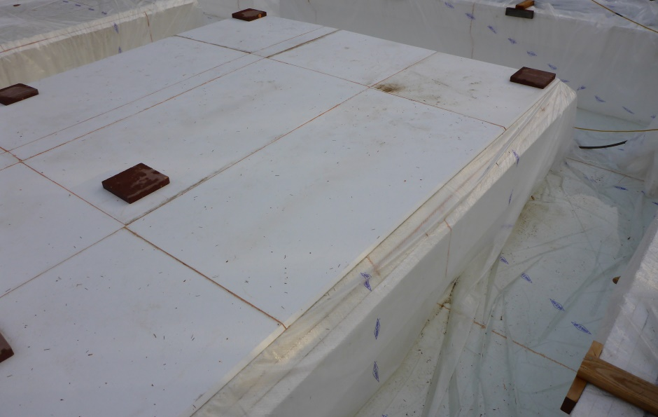 Protection Eps Over Membrane