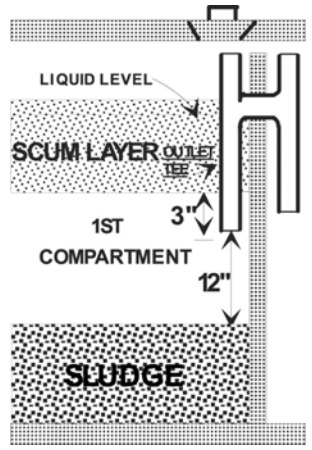 Septic sludge and scum diagram