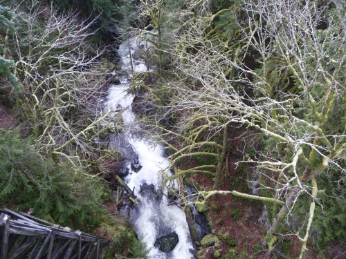 Snoqualmie Trail - Tokul river